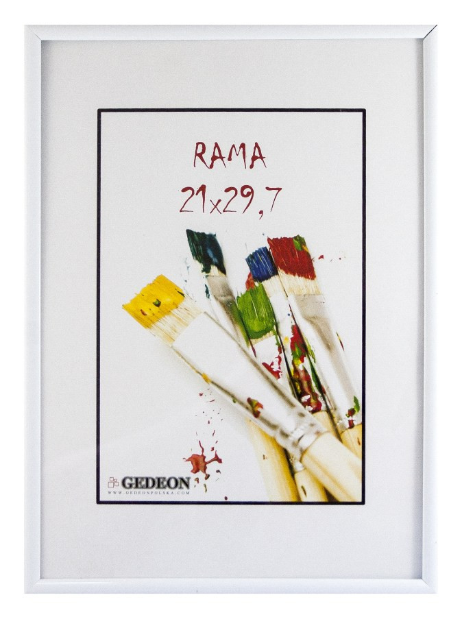 Raam Plastik 30x40 White IT