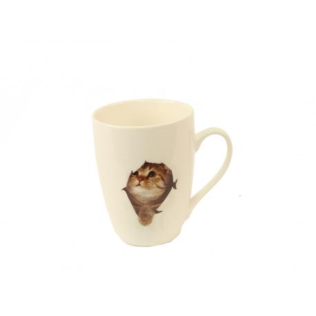Kruus Kass 21398
